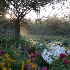 Paint with Lori McNee in Giverny at Monet's Garden May 2019